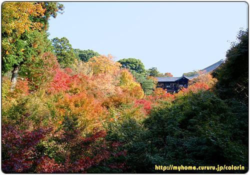 京都東山 東福寺 臥雲橋から見上げた通天橋
