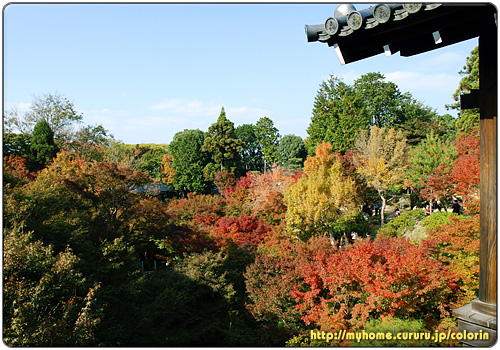 2京都東山 東福寺 通天橋から臥雲橋方向の眺め