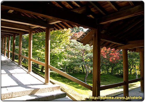 2京都東山 東福寺