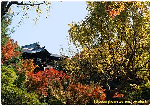 京都東山 東福寺 少し下から通天橋を望む