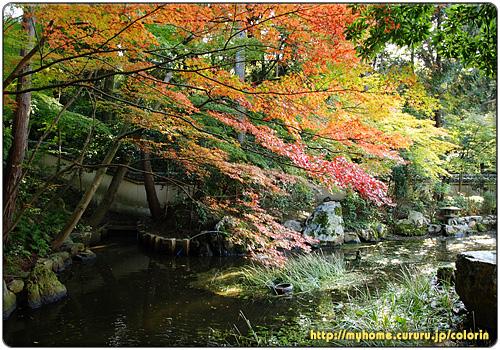 京都東山 東福寺 即宗院庭園