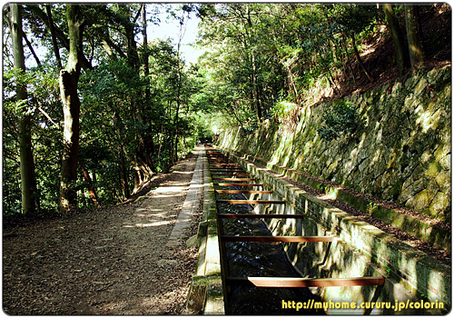 南禅寺方向へ向かう疏水分線